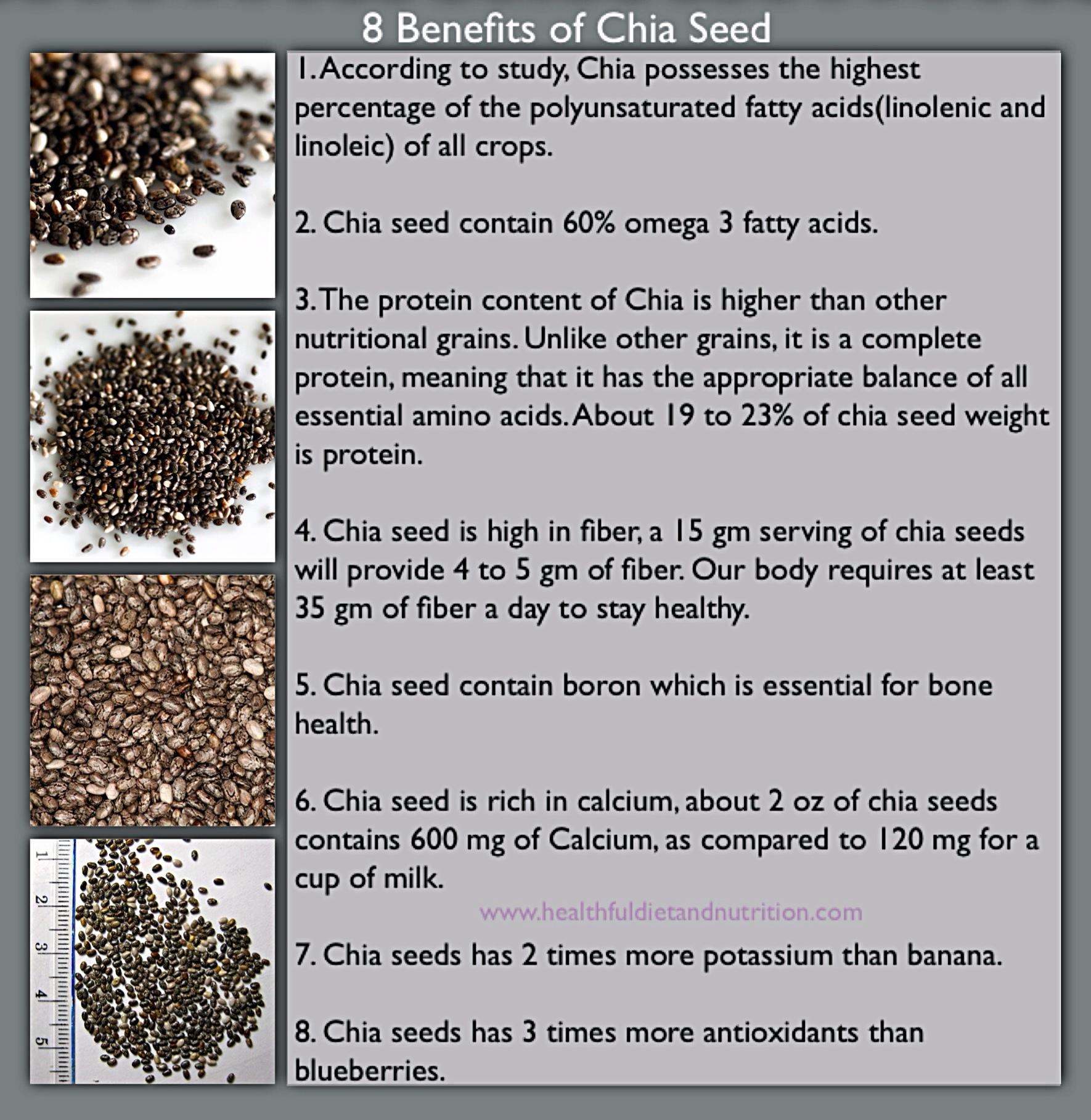 8 Health Benefits of Chia Seed