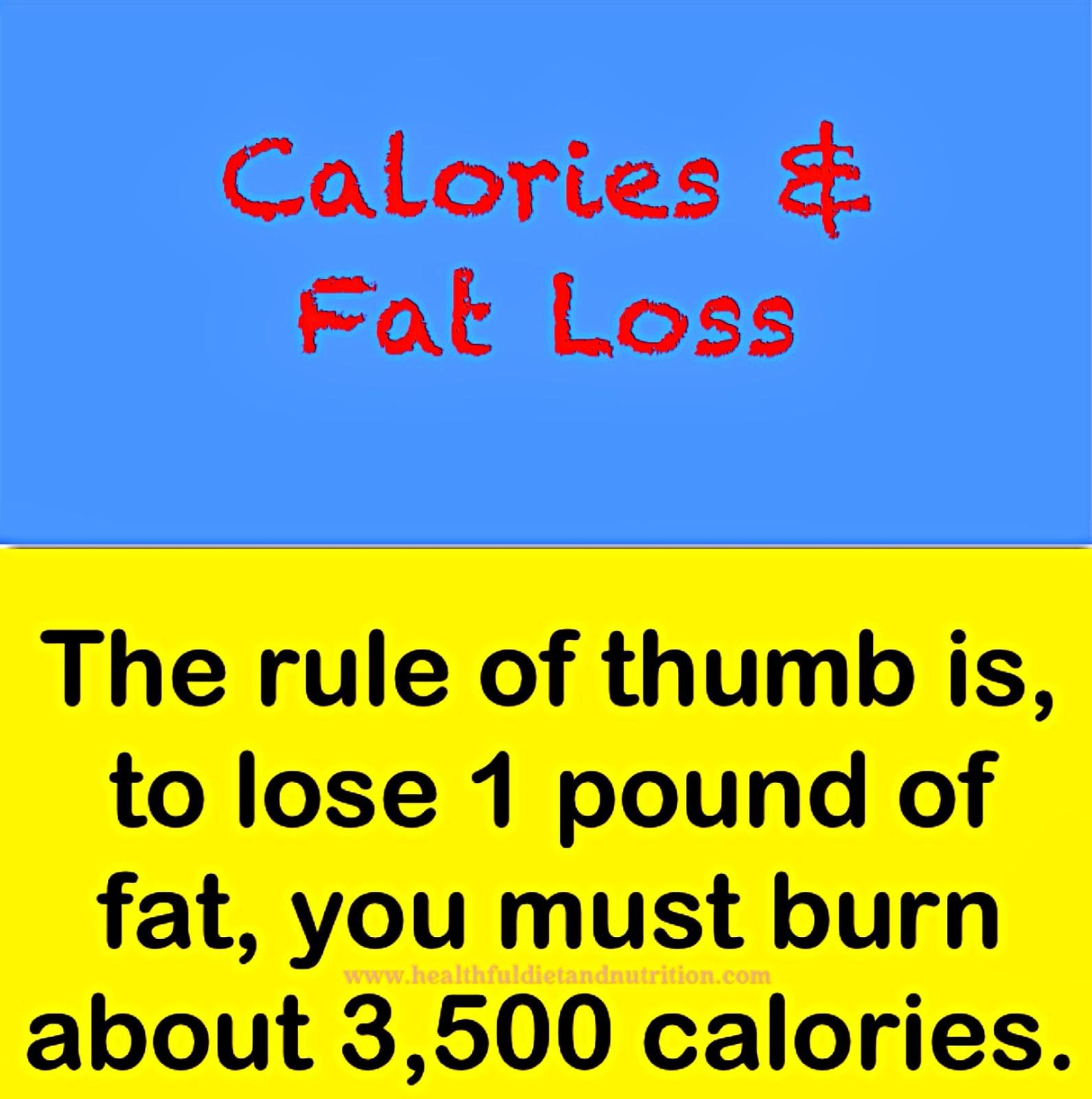 Calories And Fat Loss