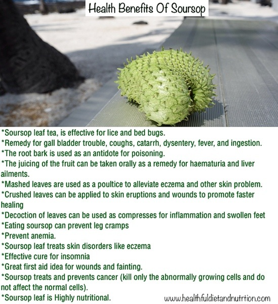 Health Benefits of Soursop Fruit