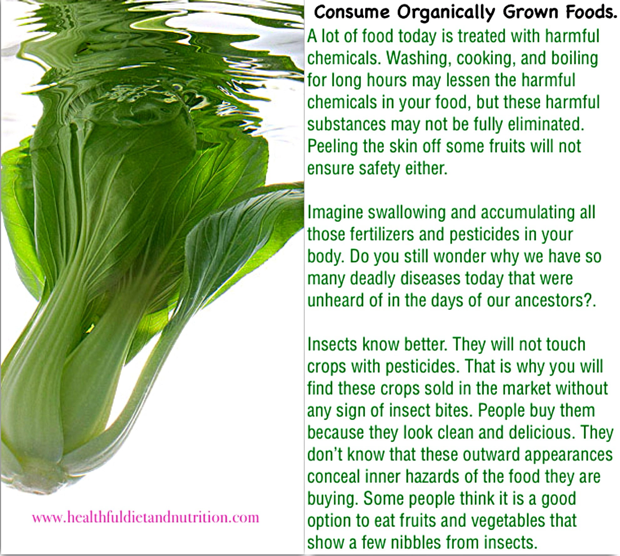 Consume Organically Grown Foods