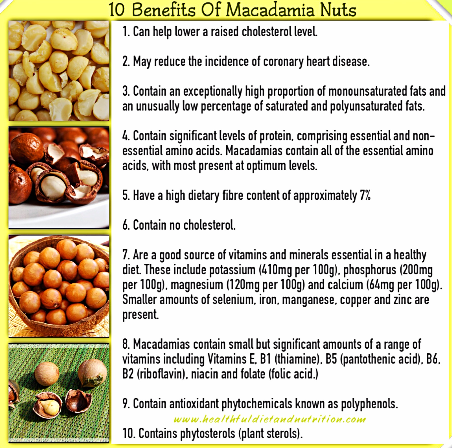 10 Benefits of Macadamia Nuts