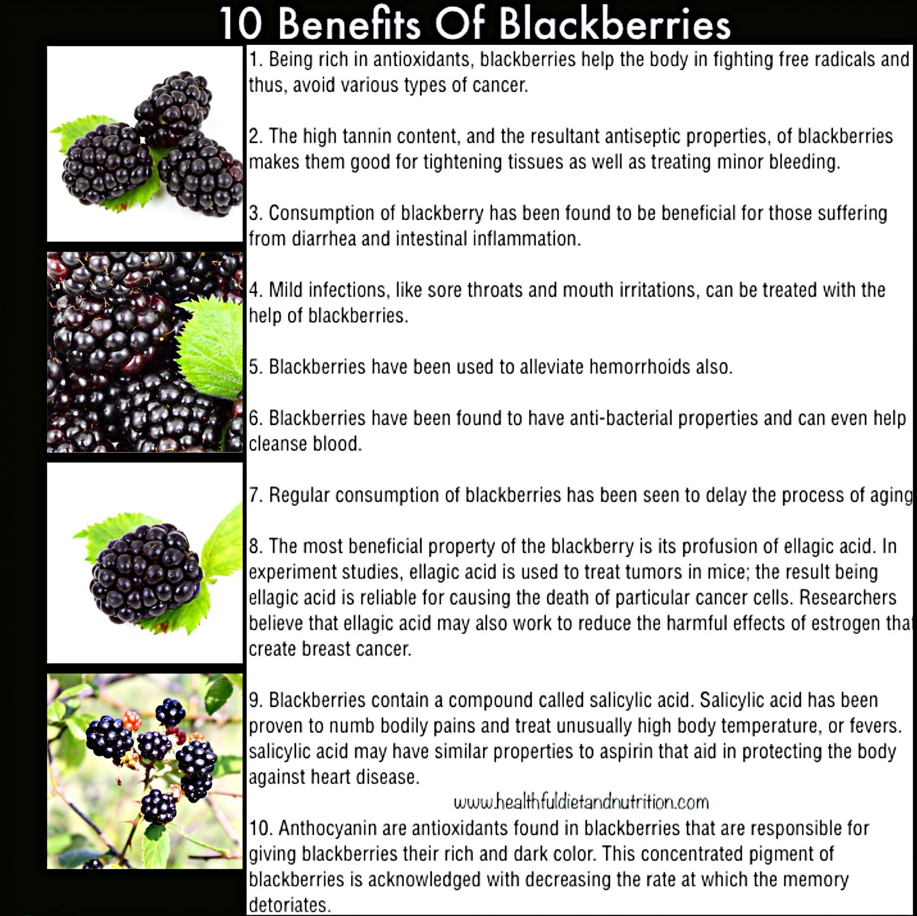 10 Benefits of Blackberries