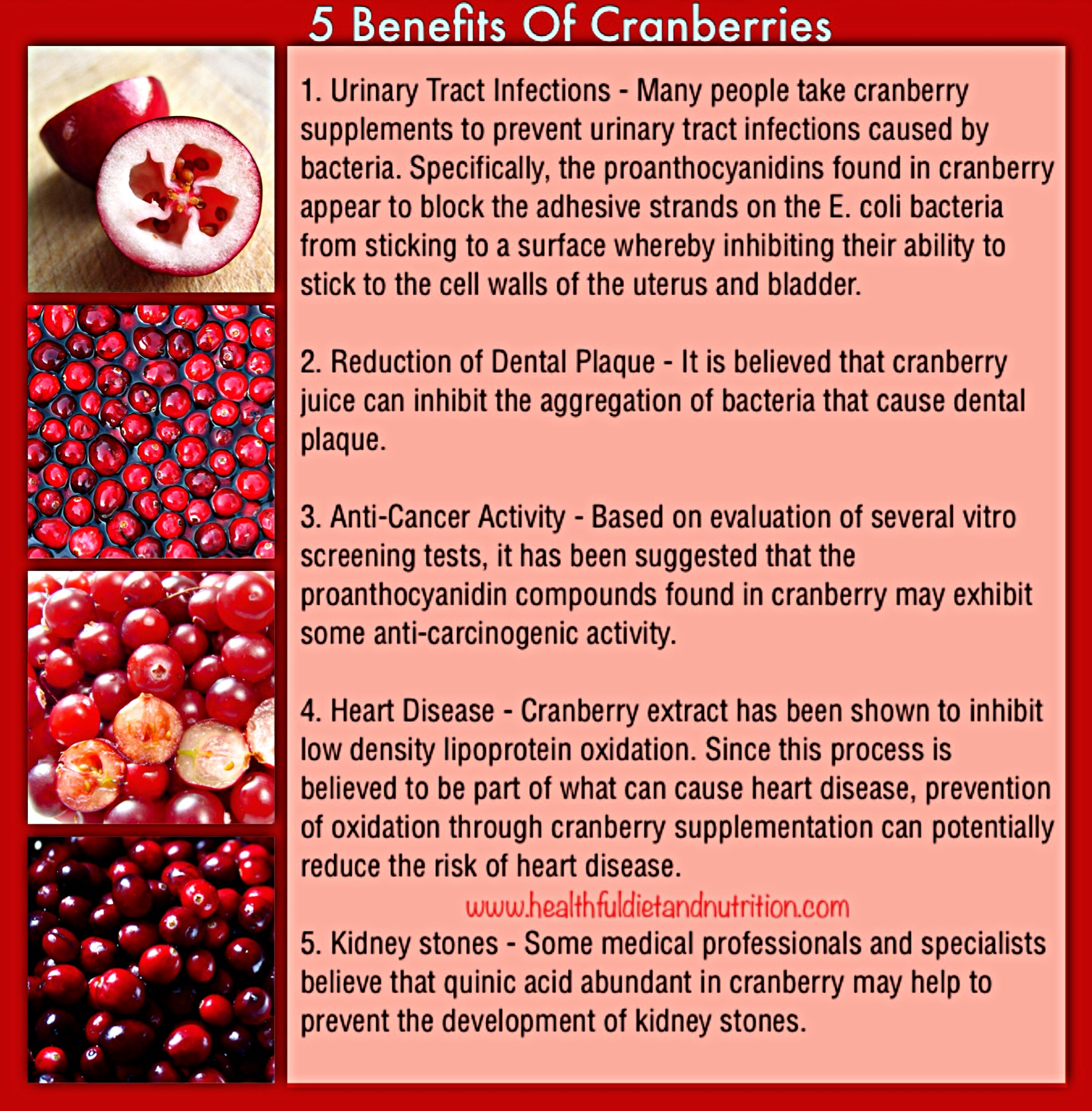 5 Health Benefits of Cranberries Fruit