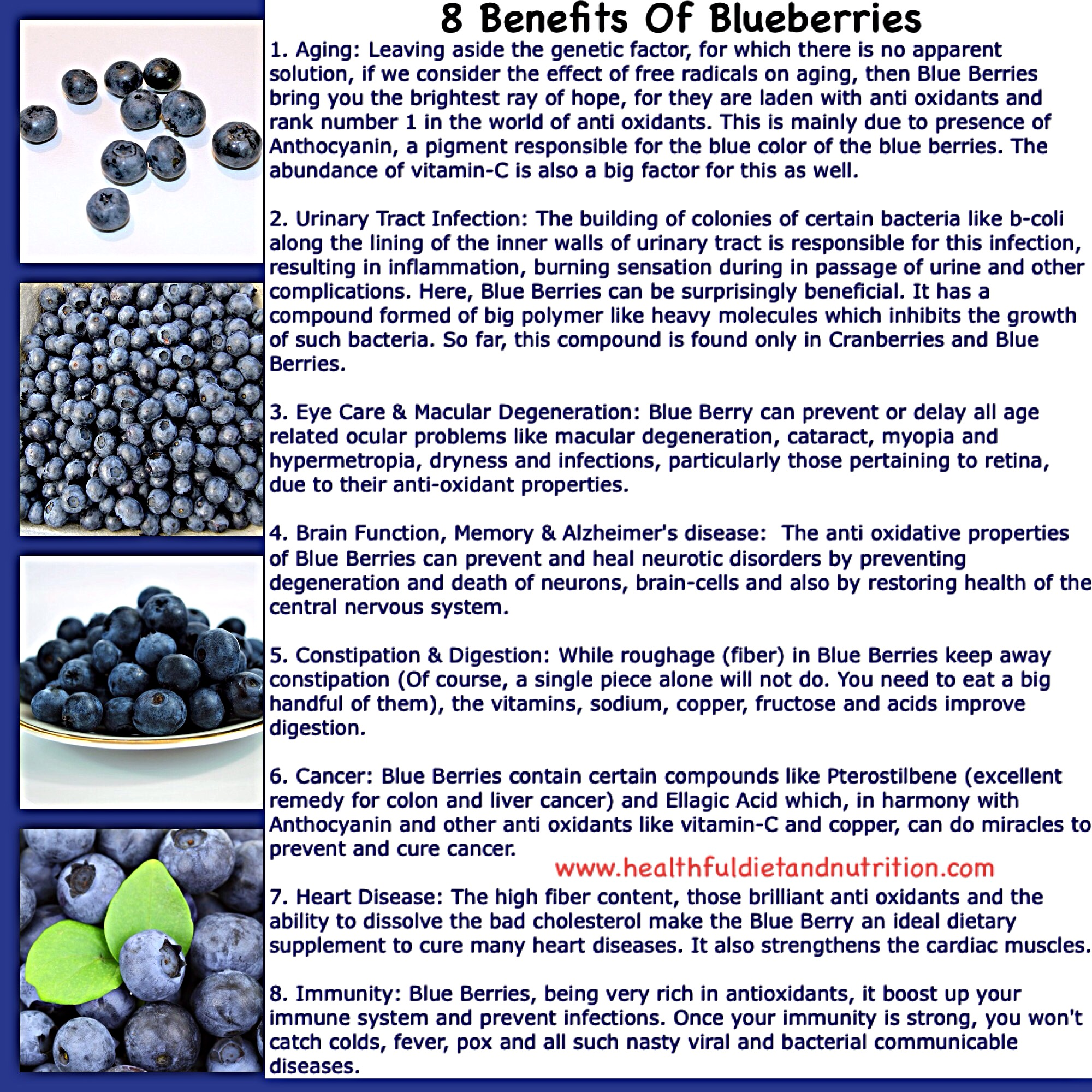 8 Health Benefits of Blueberries Fruit