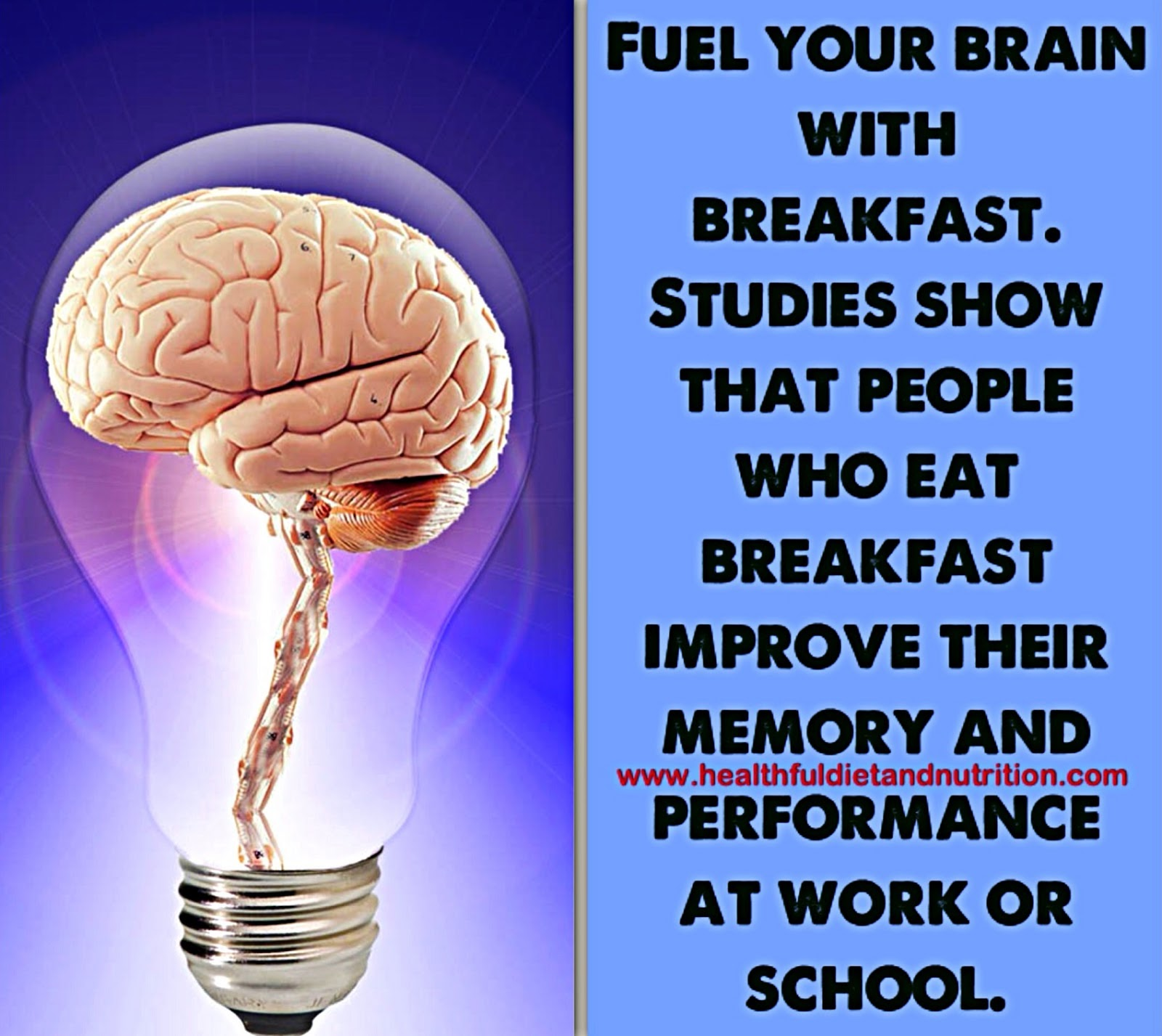 Fuel Your Brain With Breakfast