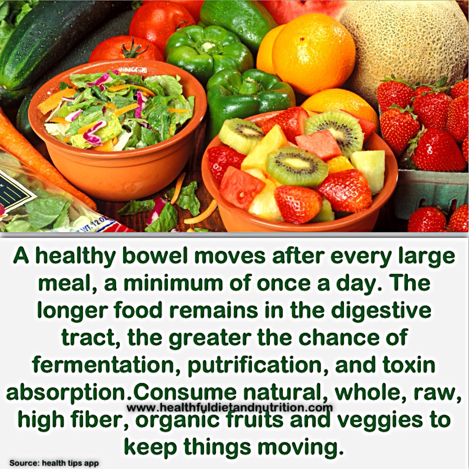 Healthy Bowel Movement