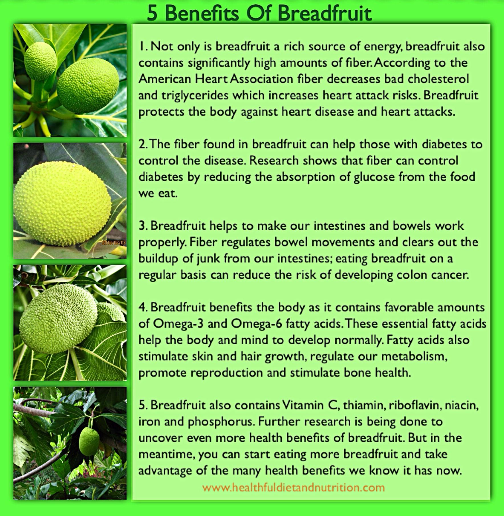 5 Benefits of BreadFruit