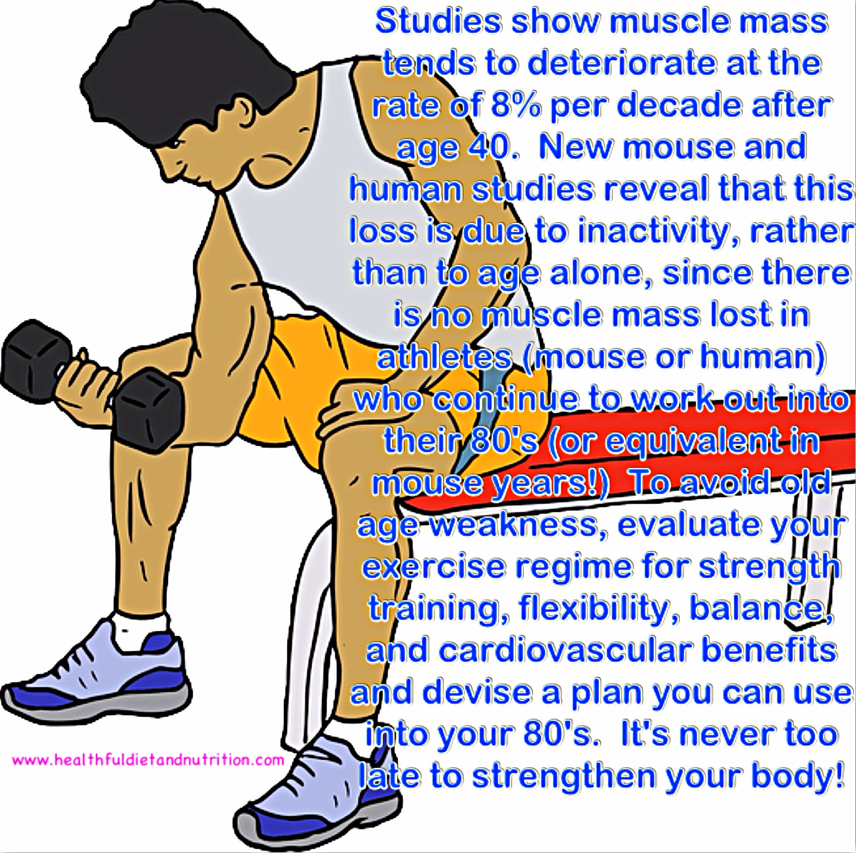 Strengthen Your Body To Avoid Muscle Mass Loss